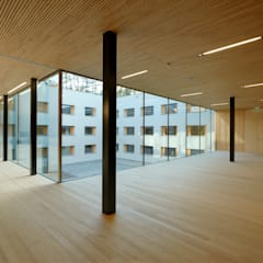 Aula:  Schulen von Fink Thurnher Architekten