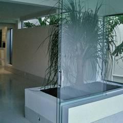 CASA EM SÃO PAULO: Jardins de inverno minimalistas por Kika Prata Arquitetura e Interiores.