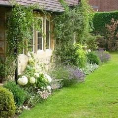 An Artists Garden:  Garden by Rebecca Smith Garden Design