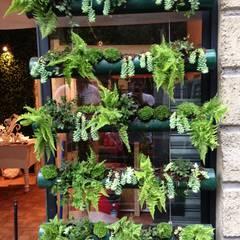 jardin vertical: Espacios comerciales de estilo  por Armatoste studio