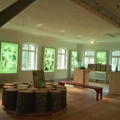 Museumsraum mit gemalter Zeitreise:  Museen von Architektur con Terra