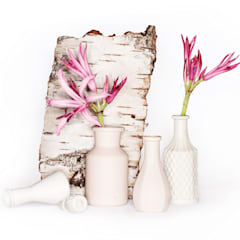 Mini-Vasen:  Bars & Clubs von abendroth-porzellan