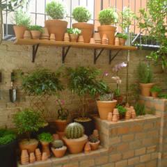 PEQUENO JARDIM APARTAMENTO TÉRREO. SÃO PAULO.BRASIL: Jardins  por Línea Paisagismo.Claudia Muñoz,Moderno