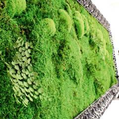 moss with plants design: styl , w kategorii Szpitale zaprojektowany przez rstudio,