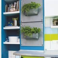 Butik Bahçe Dikey Bahçe ve Peyzaj Tasarımları  – Butik Bahçe ile Yeşili Duvarlarınıza Taşıyın..!:  tarz Teras