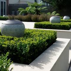 Fern Garden:  Garden by Garden Arts
