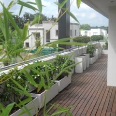 Balcones Aromáticos: Terrazas de estilo  por Estudio Nicolas Pierry: Diseño en Arquitectura de Paisajes & Jardines