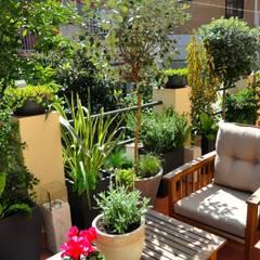 Teras by ésverd - jardineria & paisatgisme