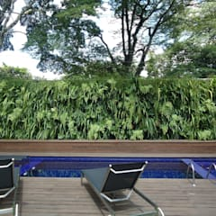 Pool by Quadro Vivo Urban Garden Roof & Vertical