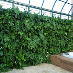 Projetos Diversos: Terraços  por Quadro Vivo Urban Garden Roof & Vertical
