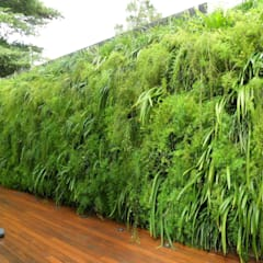 Garden by Quadro Vivo Urban Garden Roof & Vertical