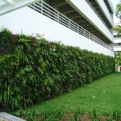 Edificios de oficinas de estilo  por Quadro Vivo Urban Garden Roof & Vertical