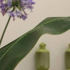 Giardino d'interno: Giardino d'inverno in stile  di otragiardini