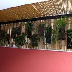 Bambu Rei Eco-Design:  tarz Kış Bahçesi