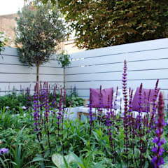 Small urban garden:  Garden by Ruth Willmott