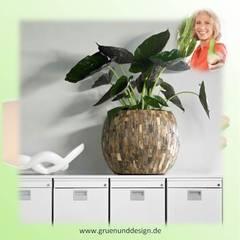Cemani round mit Philodendron:  Bürogebäude von grün+design