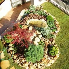 Realizzazioni giardini: Giardino in stile  di Azienda agricola Vivai Romeo