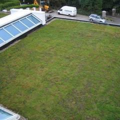 Domestic 6:  Garage/shed by Sky Garden Ltd