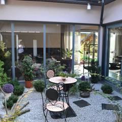 Jardines de invierno modernos de Autorskie Studio Projektu QUBATURA Moderno