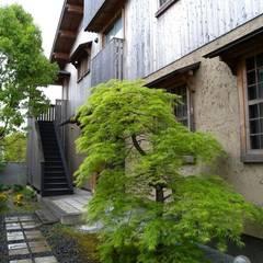 新緑の北面外観: 篠田 望デザイン一級建築士事務所が手掛けた家です。,ラスティック
