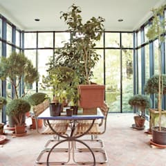 Innenansicht mit Pflanzen:  Wintergarten von v. Bismarck Architekt