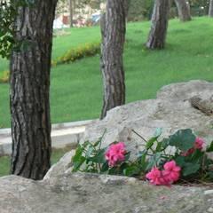 sihirlipeyzaj – sihirli peyzaj: asyatik tarz tarz Bahçe