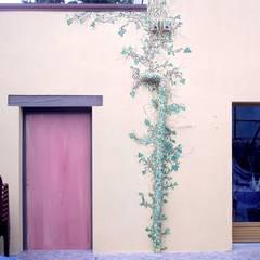 provence : Restaurants de style  par Emilie Cardinale