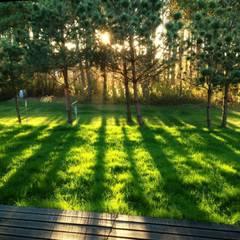 Jak stara fabryka w sercu lasu: styl , w kategorii Ogród zaprojektowany przez RAJEK Projektowanie Wnętrz