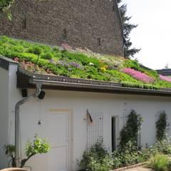 Garden by Nagelschmitz Garten- und Landschaftsgestaltung GmbH