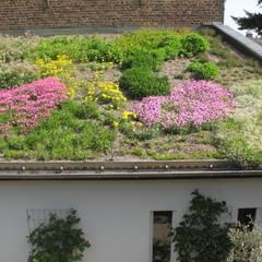 Intensiv Dachbegrünung Bauernhof:  Garage & Schuppen von Nagelschmitz Garten- und Landschaftsgestaltung GmbH