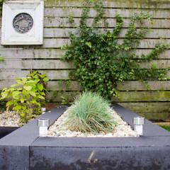 moderne tuin:  Tuin door Hoveniersbedrijf de bruin