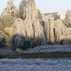 Voorbeeld: klasieke Tuin door Herman Geers dwerg & miniatuurplanten