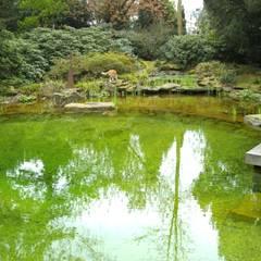 Jardines de estilo asiático por Architektura krajobrazu- naturalne systemy uzdatniania wod
