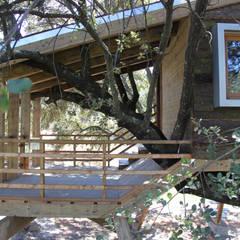 Casa en el árbol enraizada.: Jardines de estilo  de Urbanarbolismo