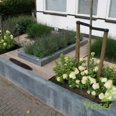 Strakke robuuste voortuin: moderne Tuin door Visser Tuinen