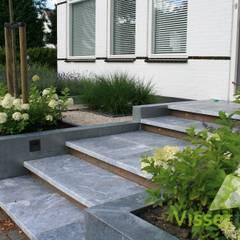 Strakke robuuste voortuin:  Tuin door Visser Tuinen, Modern