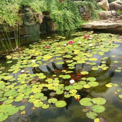 Jardines Mediterráneos: Jardines de estilo  de Viveros Pou Nou