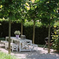 Schaduwterras om te eten: moderne Tuin door Stoop Tuinen