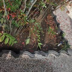 足元の下草たち: 樹・中村昌平建築事務所が手掛けた枯山水です。