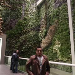 Tropical walls & floors by abelia peyzaj Tropical