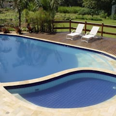 Pool by Roncato Paisagismo e Comércio de Plantas Ltda,