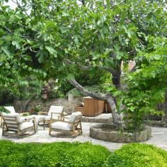 Feng Shui: Jardin de style  par Revelation-Fengshui, Minimaliste