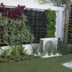 InGarden: minimal tarz tarz Bahçe