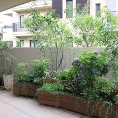 Terrace by 株式会社ムサ・ジャパン ヴェルデ