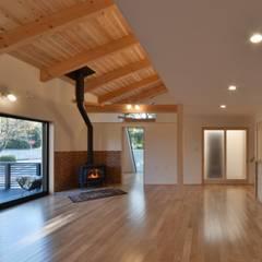 若山建築設計事務所:  tarz Oturma Odası