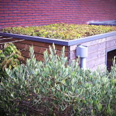 Jardines de estilo moderno de Ernst Baas Hoveniers B.V. / Ernst Baas Tuininrichting B.V. Moderno