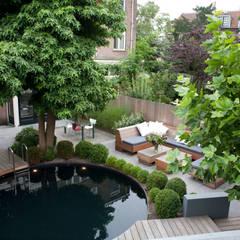 Moderne stijlvolle stadstuin in centrum Haarlem:  Tuin door Biesot