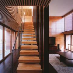 木ルーバーの家: 平林繁・環境建築研究所が手掛けた廊下 & 玄関です。