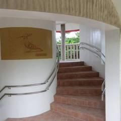 巨木の隠れ家: (株)スペースデザイン設計(一級建築士事務所)が手掛けた廊下 & 玄関です。