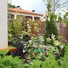 Navarra 2: Gimnasios domésticos de estilo  de Jardinarias